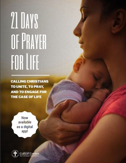 3 Free Resources for Sanctity of Human Life Month